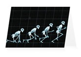After Muybridge
