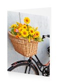 Vintage bike with flowers