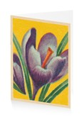 Easter Crocus